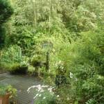 sfeer van de tuin